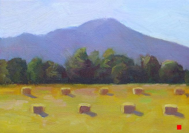 Sonoma Hay by Linda Rosso