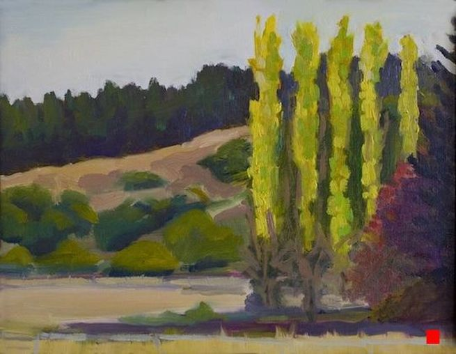 Nicasio Poplars by Linda Rosso